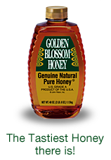 golden blossom honey product